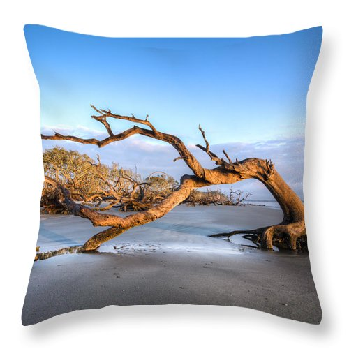 Ocean Throw Pillow featuring the photograph Oaks On Driftwood Beach by Debra and Dave Vanderlaan