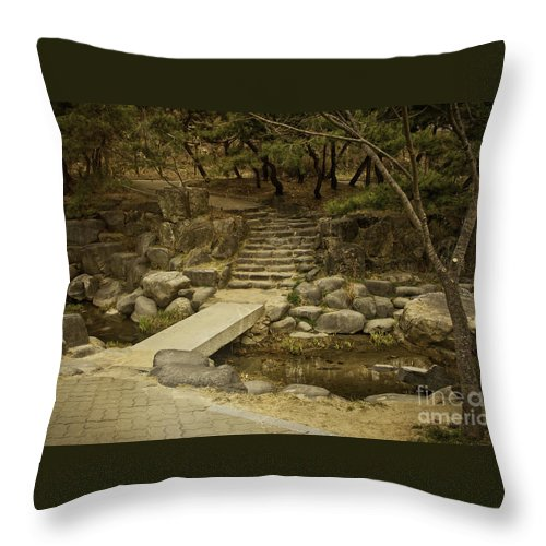 Oasis Throw Pillow featuring the photograph Oasis by Audrey Wilkie