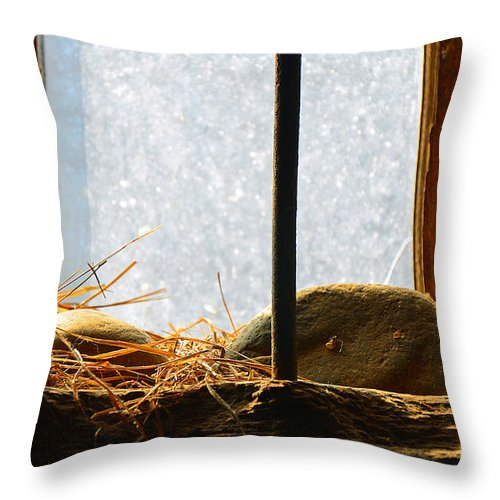 Abstract Throw Pillow featuring the photograph Obscure by Lauren Leigh Hunter Fine Art Photography