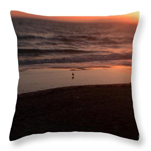 Sunset Throw Pillow featuring the photograph Ocean Glow by Scott Pellegrin