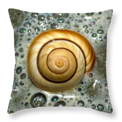 Shell Throw Pillow featuring the photograph Ocean Shell Spiral by Sandi OReilly