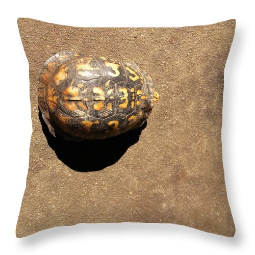 Turtle Throw Pillow featuring the digital art Revelation 3 3 by Matthew Seufer