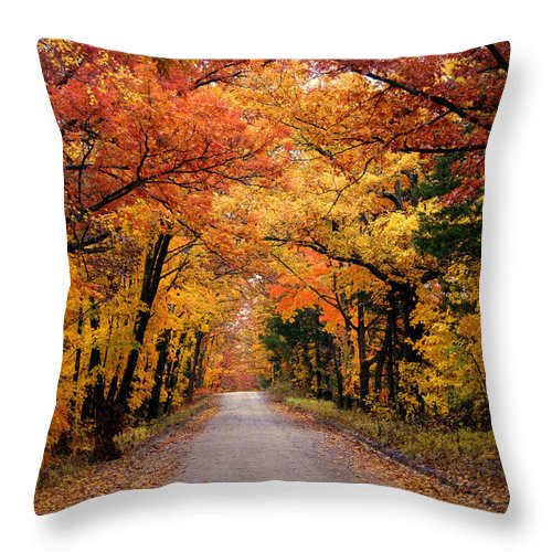 Fall Foliage Throw Pillow featuring the photograph October Road by Cricket Hackmann