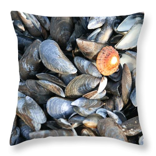 Shells Throw Pillow featuring the photograph Odd Man Out by Christopher Rowlands