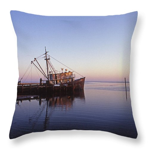 Nature Throw Pillow featuring the photograph Of Rust And Salt Air by Skip Willits