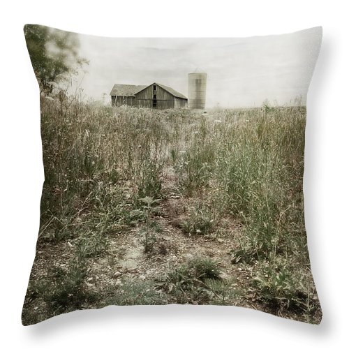 Drive; Driveway; Path; Dirt; Gravel; Farm; Grasses; Weeds; Barn; Outside; Outdoors; Day; Nature; Vintage; Old; Worn; Sky; Clouds; Rural; Land; Wood; Tree; Leaves; Abandoned; Silo; Grey; Gray Throw Pillow featuring the photograph Off In The Distance by Margie Hurwich