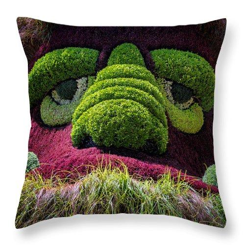 Joan Carroll Throw Pillow featuring the photograph Ogre by Joan Carroll