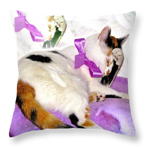Kitty Throw Pillow featuring the photograph Oh No Not A Ribbon by Phyllis Kaltenbach