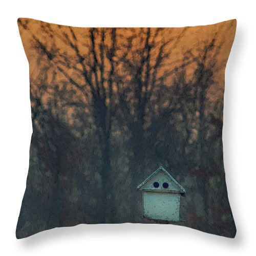 Bird House Throw Pillow featuring the photograph Ohio Bird House At Sunset by Martin Belan