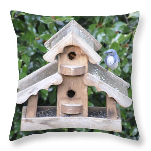 Oregon City Throw Pillow featuring the photograph Oil Paint - Blue Bird by Image Takers Photography LLC - Carol Haddon