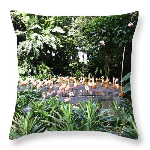 Asia Throw Pillow featuring the photograph Oil Painting - A Number Of Flamingos Surrounded By Greenery In Their Enclosure by Ashish Agarwal