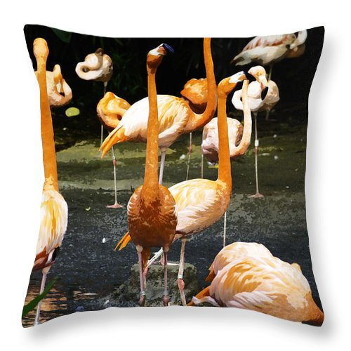 Animals With Legs Tagged Throw Pillow featuring the photograph Oil Painting - A Number Of Flamingos With Their Heads Held High Inside The Jurong Bird Park by Ashish Agarwal