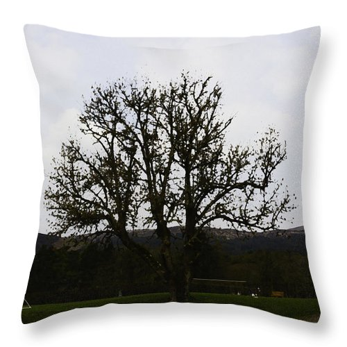Canon Throw Pillow featuring the photograph Oil Painting - An Old Tree In The Middle Of A Garden And Playground by Ashish Agarwal