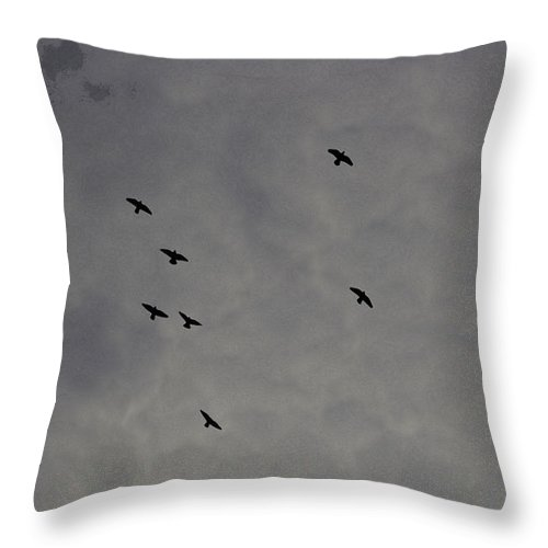 Bird Throw Pillow featuring the digital art Oil Painting - Birds In A Cloudy Sky by Ashish Agarwal
