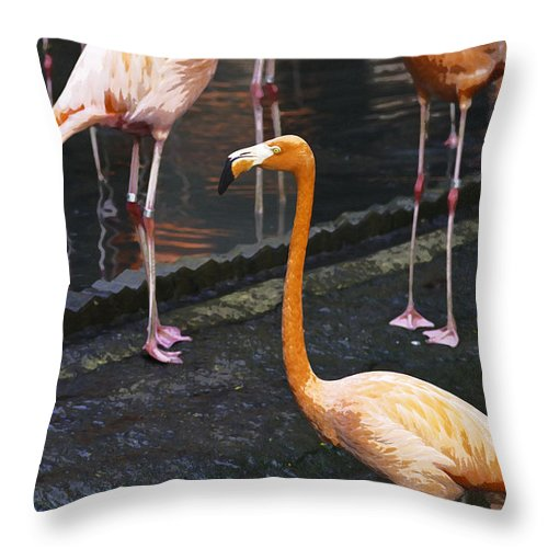 Asia Throw Pillow featuring the digital art Oil Painting - Focus On A Single Flamingo Inside The Jurong Bird Park by Ashish Agarwal