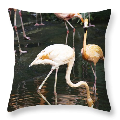 Asia Throw Pillow featuring the digital art Oil Painting - The Head Of A Flamingo Under Water In The Jurong Bird Park In Singapore by Ashish Agarwal