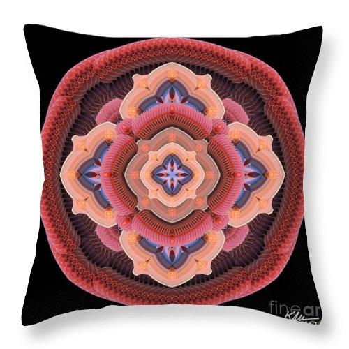 Mandala Throw Pillow featuring the photograph Old Apple Mandala by Karen Jordan Allen