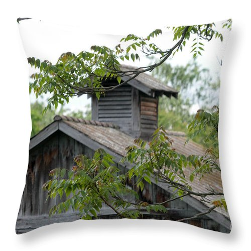 Old Barn Throw Pillow featuring the photograph Old Barn 11 by Dwight Cook