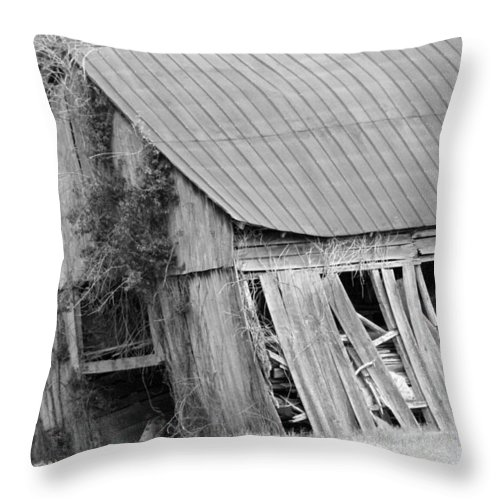 Old Barn Throw Pillow featuring the photograph Old Barn 5 by Dwight Cook