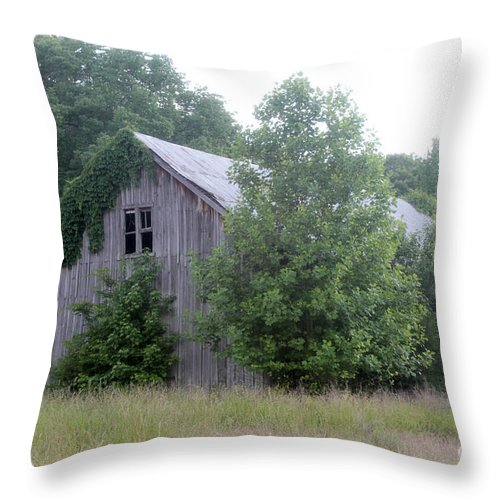 Old Barn Throw Pillow featuring the photograph Barn In Kentucky No 82 by Dwight Cook