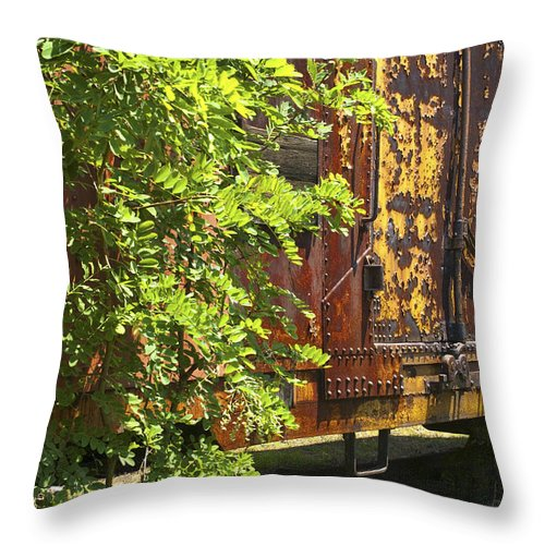Railroad Throw Pillow featuring the photograph Old Boxcar Dying Slowly by Paul W Faust - Impressions of Light