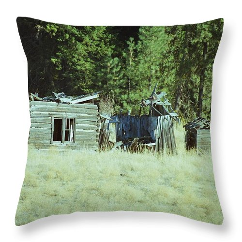 Barns Throw Pillow featuring the photograph Old Homestead, Needs Work by Mike Wheeler