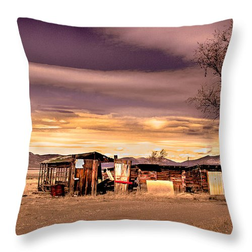 Old Truck Throw Pillow featuring the photograph Old Homestead by Robert Bales