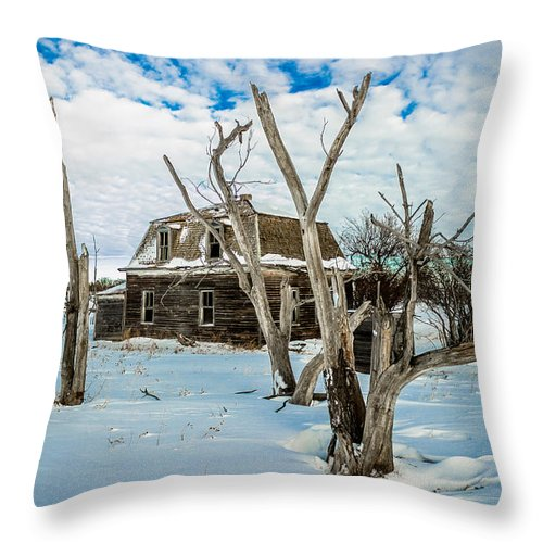 Old Throw Pillow featuring the photograph Old House 3 by Chad Rowe