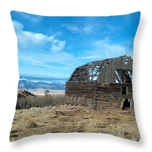 Historic Throw Pillow featuring the photograph Old Log Barn by Mark Eisenbeil
