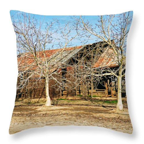 Barn Throw Pillow featuring the photograph Old Orchard Barn by Pamela Patch