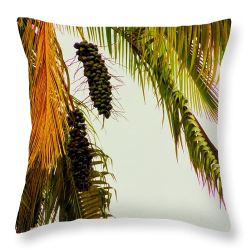 Old Throw Pillow featuring the photograph Old Palm by Al Bourassa