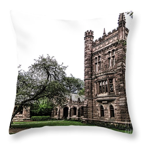 Princeton Throw Pillow featuring the photograph Old Princeton by Olivier Le Queinec