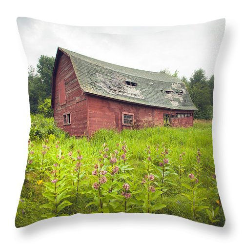 Old Barn Throw Pillow featuring the photograph Old Red Barn In A Field - Rustic Landscapes by Gary Heller