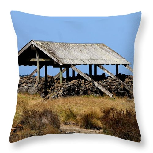 Stone Throw Pillow featuring the photograph Ambury by Jill Black