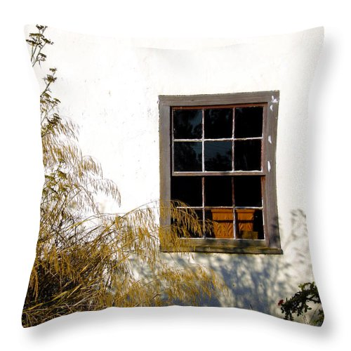 Old Building Throw Pillow featuring the photograph Old Town Window by Doug Dailey