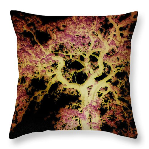 Tree Throw Pillow featuring the photograph Old Tree New Bark by Max Mullins