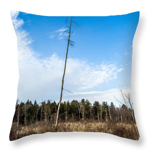 Tree Throw Pillow featuring the photograph Old Tree by Tyler Marks