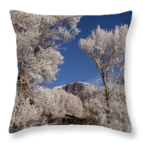 Old Wagon Throw Pillow featuring the photograph Old Wagon Horse Frost And Jim Mountain  #3945 by J L Woody Wooden