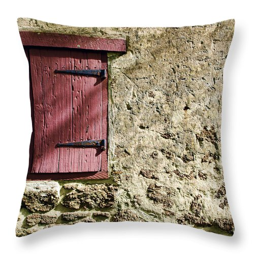 Wall Throw Pillow featuring the photograph Old Wall And Door by Olivier Le Queinec