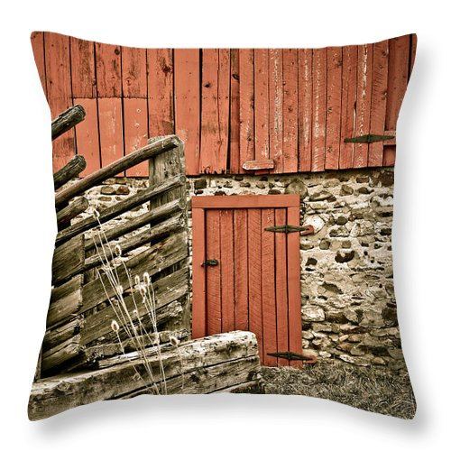 Old Throw Pillow featuring the photograph Old Wood by Marilyn Hunt