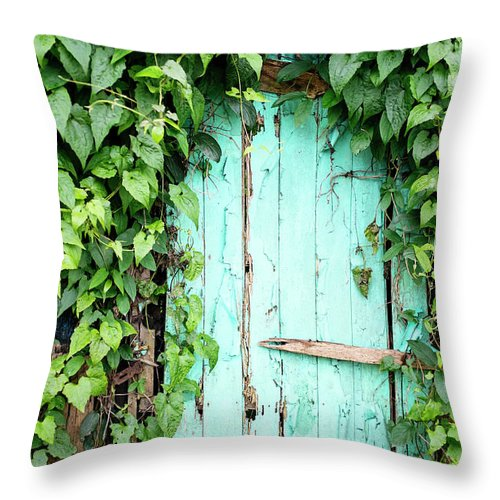 Outdoors Throw Pillow featuring the photograph Old Wooden Door by Real444
