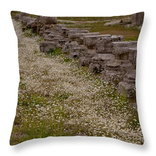 Ruins Throw Pillow featuring the photograph Olympia Ruins And Wild Flowers  #9678 by J L Woody Wooden
