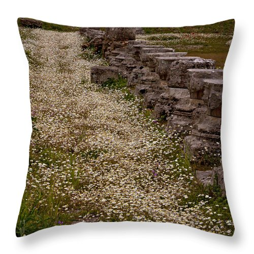 Ruins Throw Pillow featuring the photograph Olympia Ruins And Wild Flowers  #9679 by J L Woody Wooden