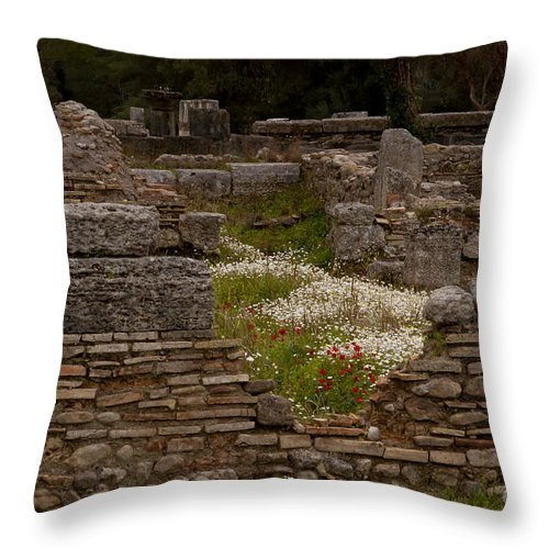 Ruins Throw Pillow featuring the photograph Olympia Ruins And Wild Flowers  #9684 by J L Woody Wooden