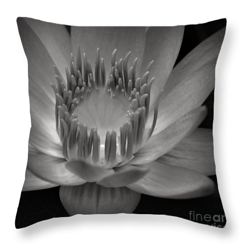 Aloha Throw Pillow featuring the photograph Om Mani Padme Hum Hail To The Jewel In The Lotus by Sharon Mau