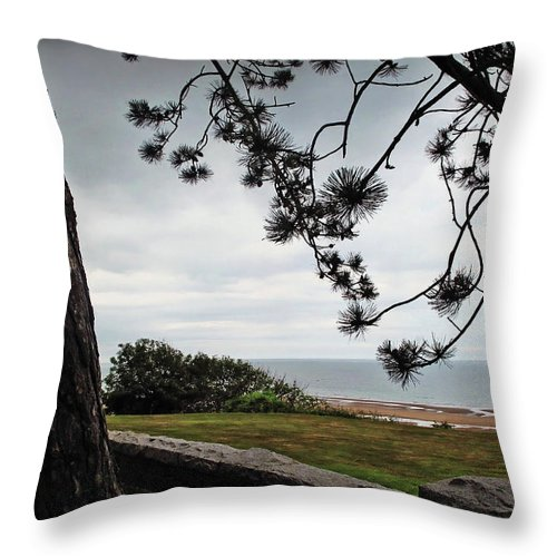 Normandy Throw Pillow featuring the photograph Omaha Beach Under Trees by Joan Minchak