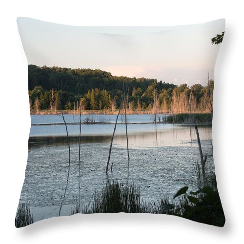 Michigan Throw Pillow featuring the photograph On Golden Pond by Linda Kerkau