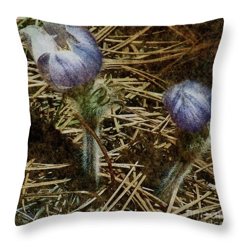 Colorado Throw Pillow featuring the painting On The Forest Floor by RC DeWinter