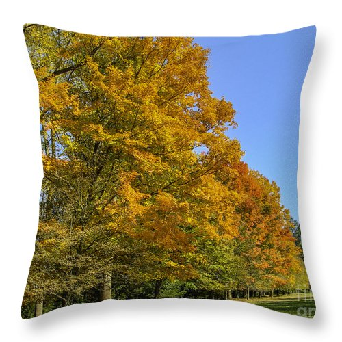 Fall Throw Pillow featuring the photograph On The Grounds Of Biltmore by Dale Powell