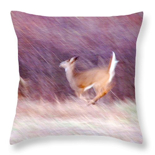 Deer Throw Pillow featuring the photograph On The Run by Tracy Winter